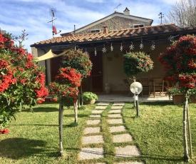 Casetta Nina con giardino recintato a Montescudaio