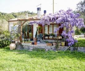 Casa Violet