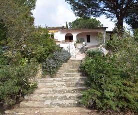 Felciaio House