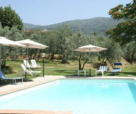 Cozy Apartment in Castelfranco di Sopra with Lawn & Pool