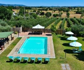 Breathtaking Villa in Cortona with Pool